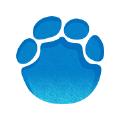 河南大象新闻app