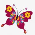 花蝴蝶视频观看无限次数